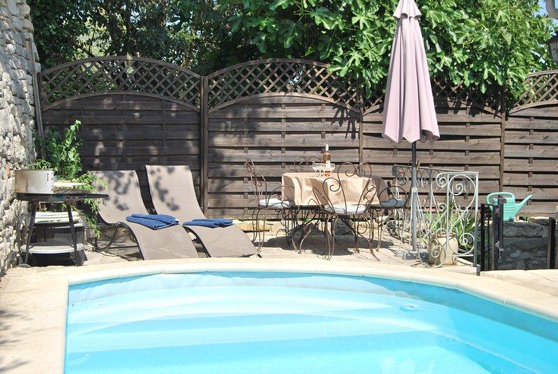 Gli alberi di fico e L'Hirondelle terrazza posteriore e piscina per bambini