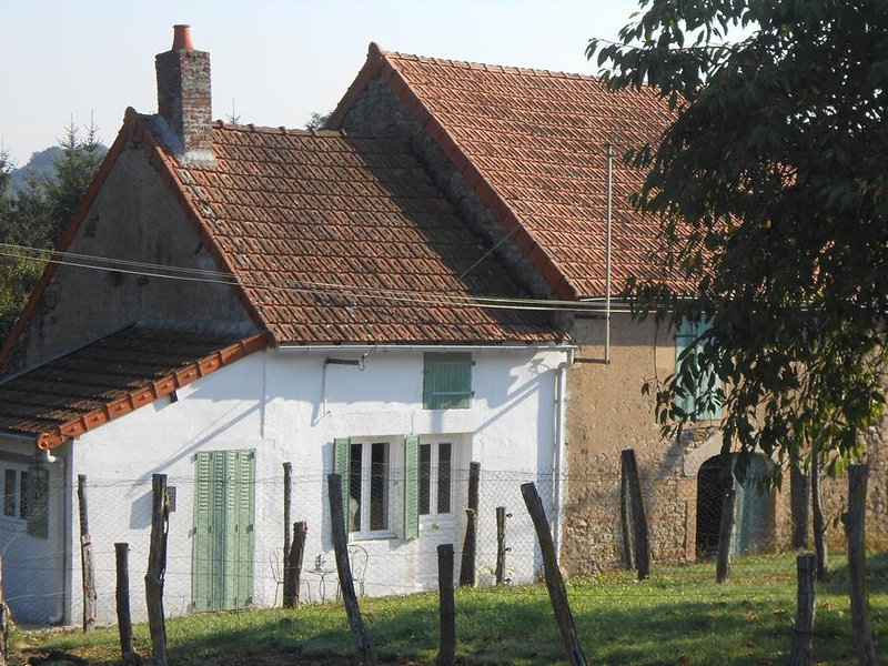Le petit Marquis, holiday rental in Marmagne