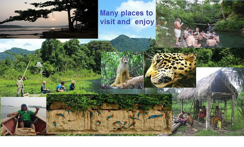 casa y viajes  en la  Amazonia  sur del Peru, vacation rental in Madre de Dios Region
