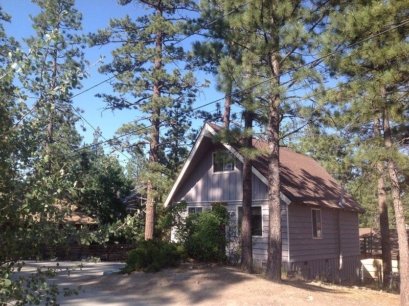 DixieBear Cabin