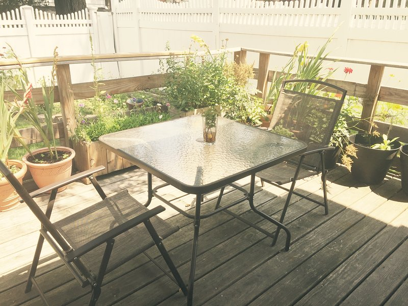 Sunny, contemporary apartment with large patio, holiday rental in Ozone Park