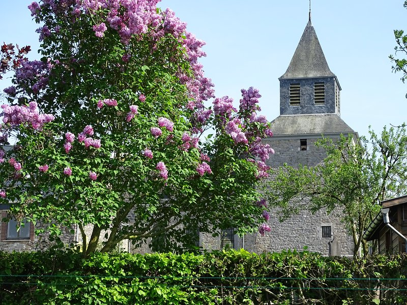 Gîte rural La Balade d'Annie, location de vacances à Dison