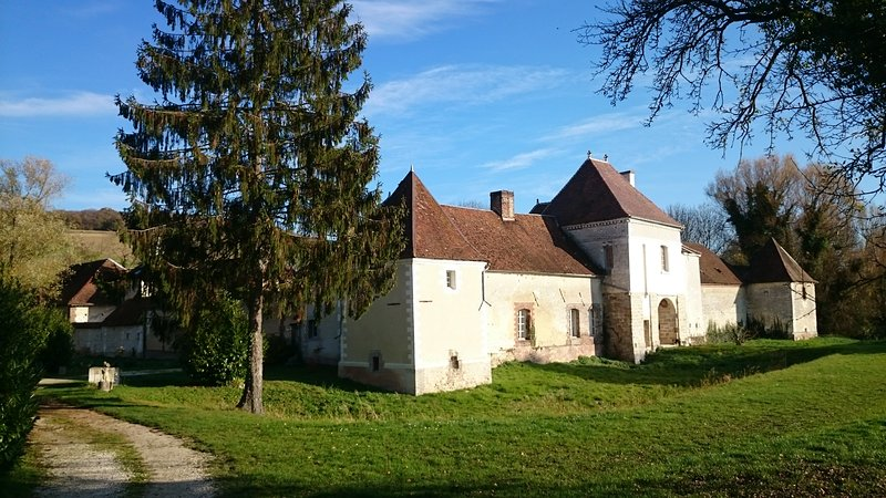 chambres d'hote au chateau des Roises, holiday rental in Bercenay-le-Hayer
