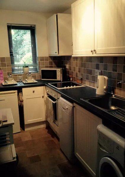 Cucina: Fornello elettrico / piano cottura, lavastoviglie, lavatrice, frigo, forno a microonde, tostapane, ferro / bordo