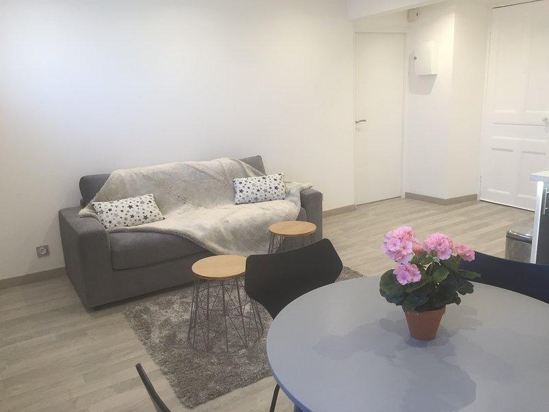 2 pièces quartier du port /Garibaldi - Nice - appartement