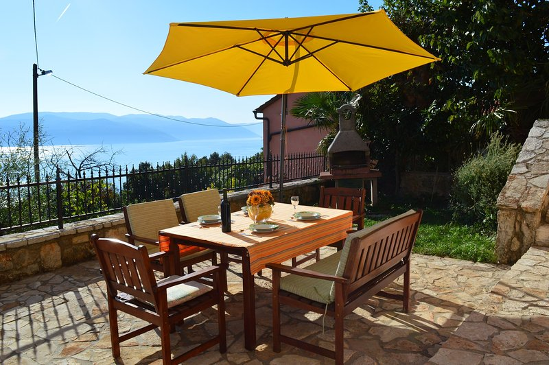 Villa Emillia best offer and perfect destination, holiday rental in Plomin