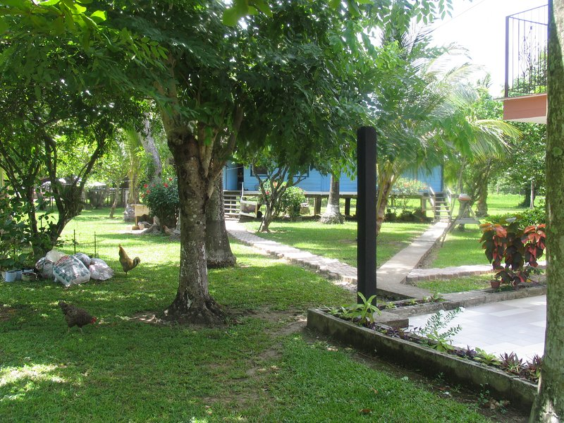 Garden area - Peace, Quiet and Tranquility!