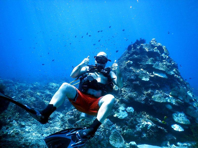 Grande immersioni intorno Gili Trawangan! Chiedimi se avete domande!
