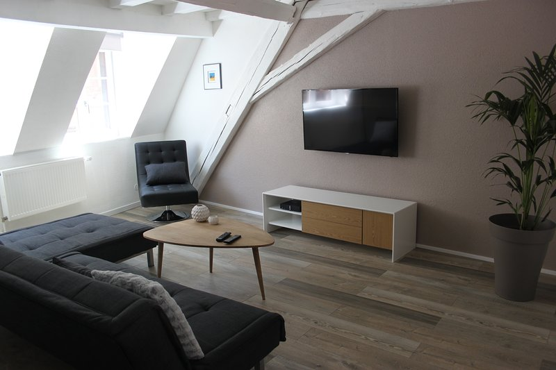 NOUVEAU ! Gite design 85m2 en hyper centre Colmar, vacation rental in Colmar