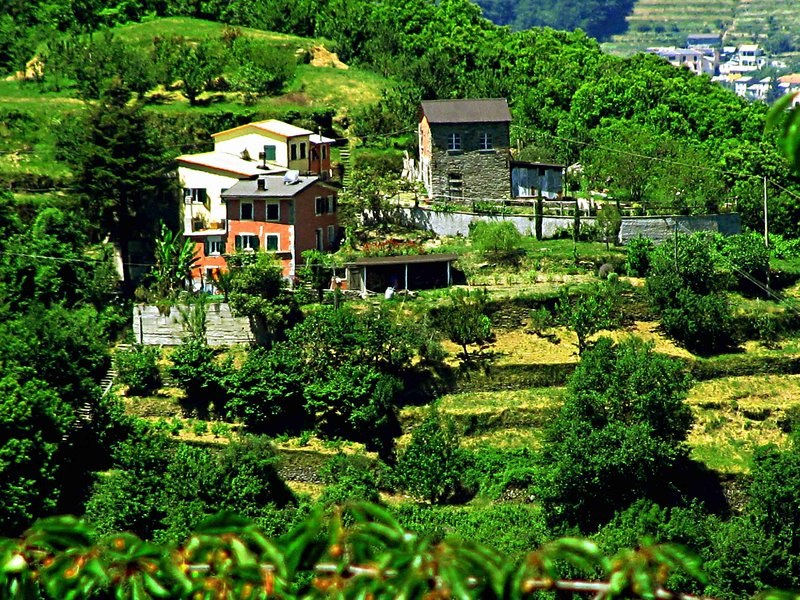 Casa bucolica 20km da Portofino, vakantiewoning in Borzonasca
