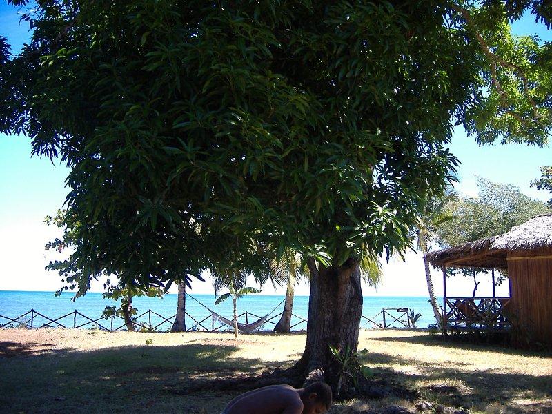 Vista desde la segunda vertiente de mango