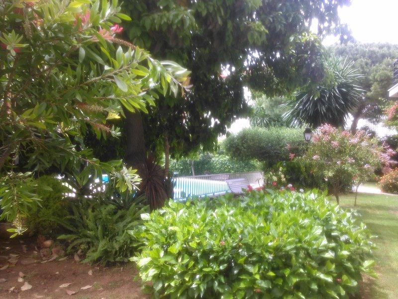 Idyllic garden in the center of Marbella