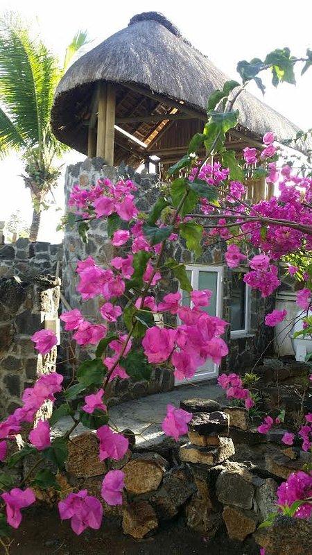 Seashells studios är en enda Mauri Vics semesterstudio i rustik stil i Paradise Mauritius