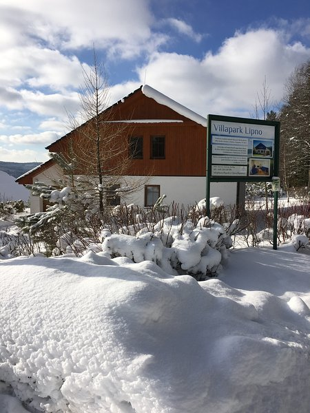 Villapark house 201, holiday rental in Lipno nad Vltavou