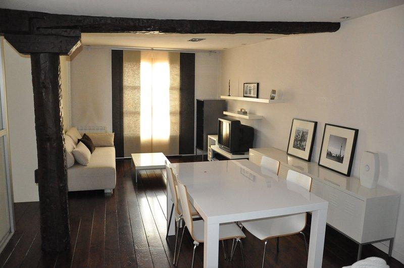 Loft en casco antiguo de Logroño, alquiler de vacaciones en Logroño