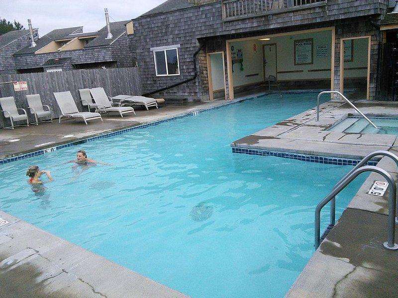 Ocean Beach, Pool, Hot-Tub, Kitchen,Fireplace,Wifi, holiday rental in Copalis Beach