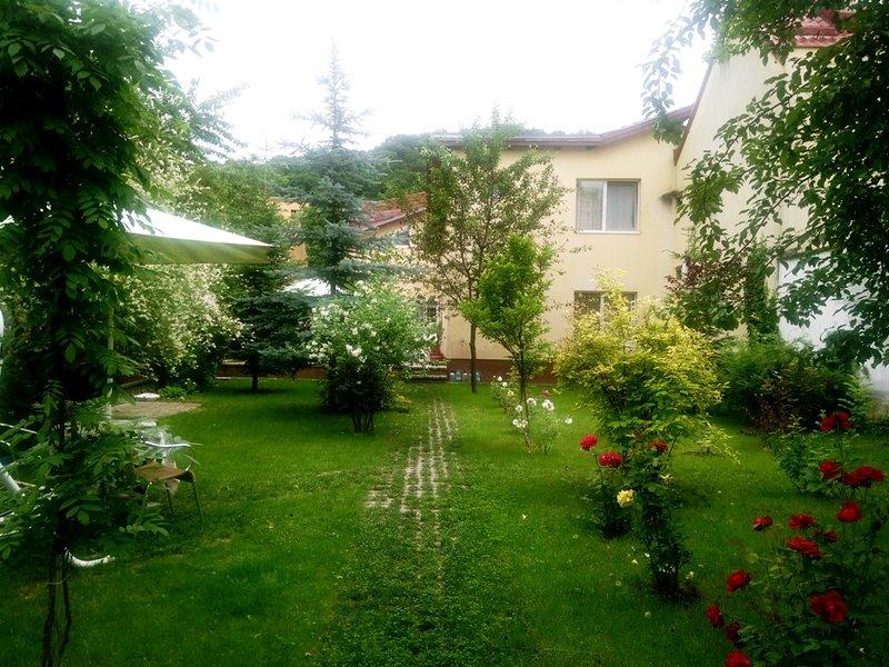 jardín pensiunea PALOMA Brasov
