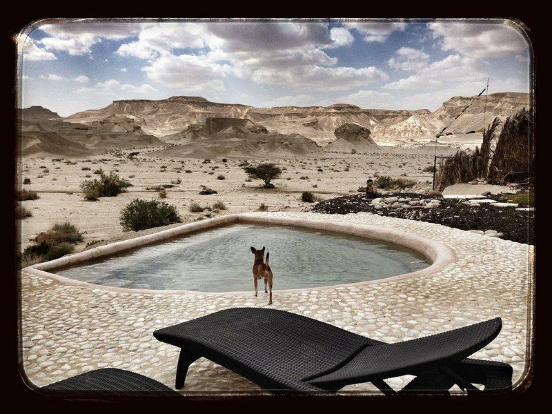 Villa Dagani in the desert, location de vacances à Zuqim
