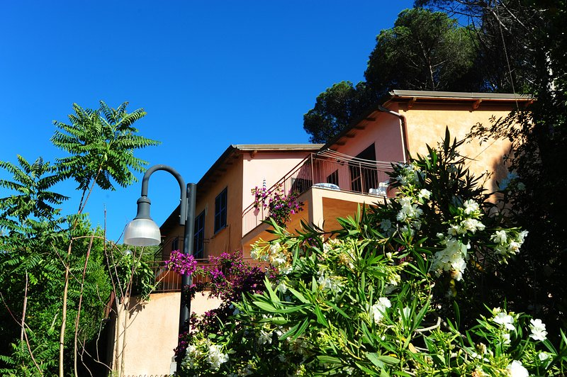 Elba, Nisportino a 100 mt dal mare, vacation rental in Rio Nell'Elba