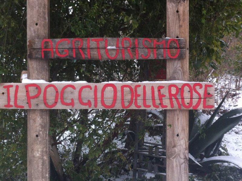 Agriturismo Il Poggio Delle Rose - Camera Matrimoniale 1, holiday rental in Nola