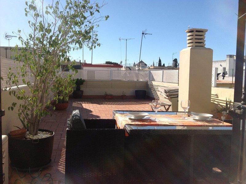 MARAVILLOSO ÁTICO CENTRO SEVILLA VFT/SE/00505, holiday rental in Almaden de la Plata