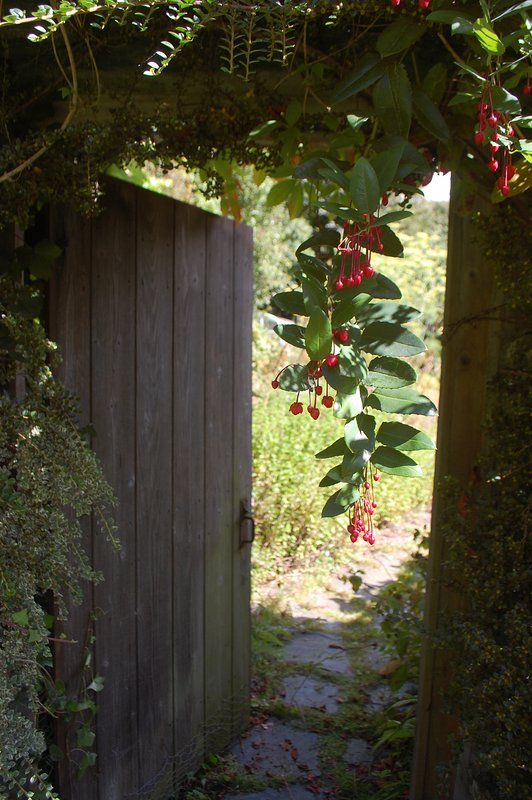 The cottages are set in beautiful grounds with their own gardens to the rear.