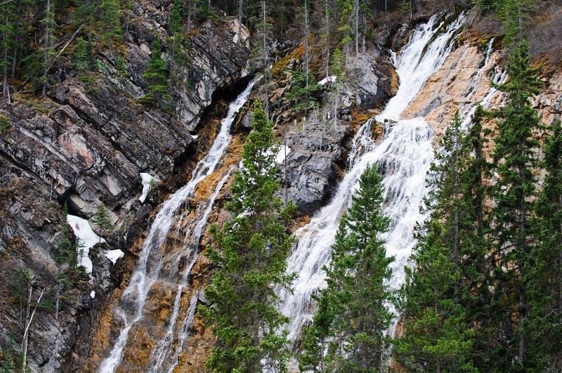 Cascada del bosque en Grassi Lakes, Canmore
