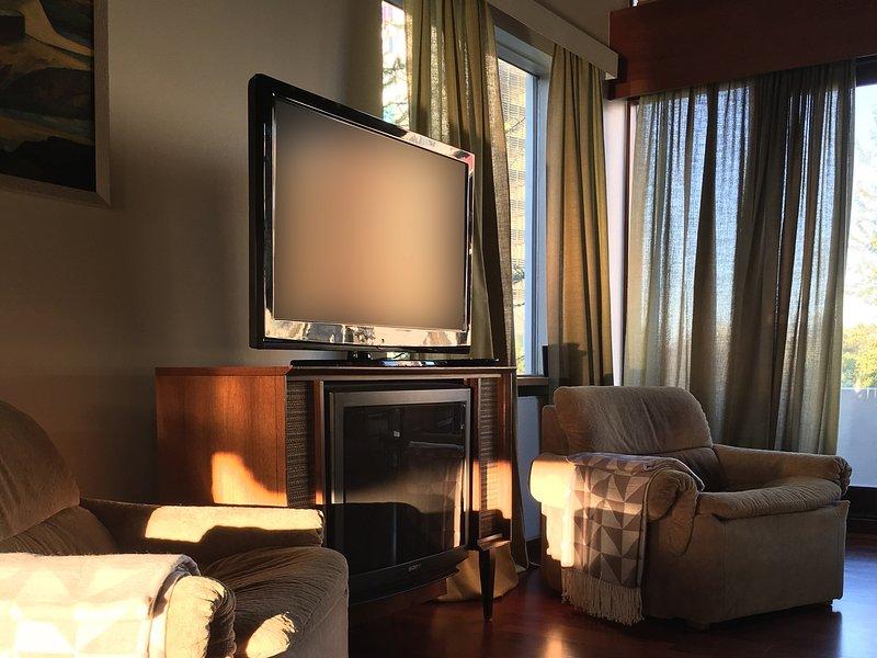 sala de estar con televisión de pantalla plana y conexión a internet de alta velocidad. Traer su propia caja de la TV (Android, Apple TV, etc)