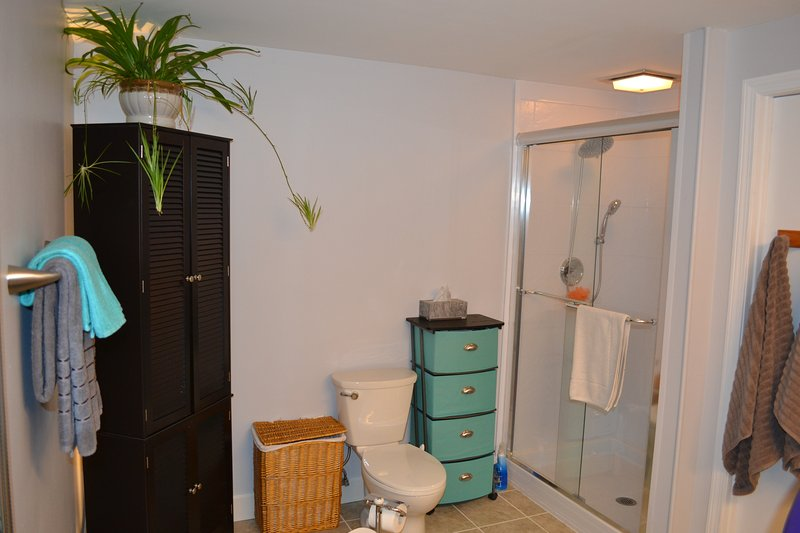 Other end of the large bathroom.