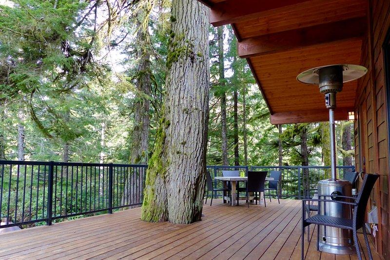 Large front deck
