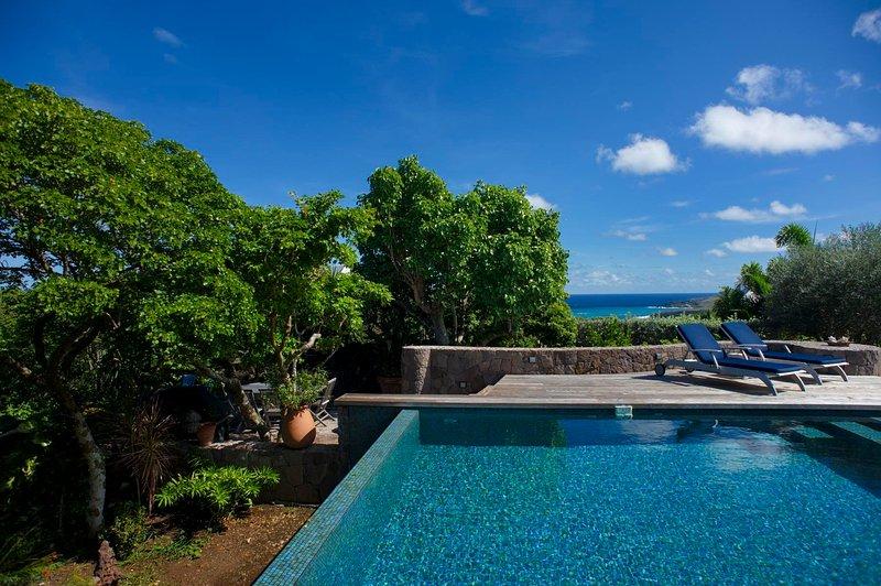 Turtle, location de vacances à Marigot