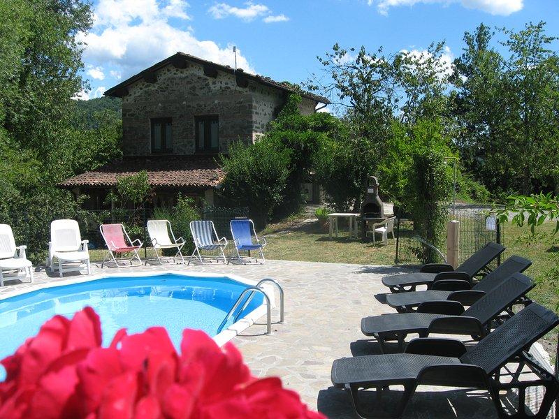 villa taverna piscina in esclusiva wi-fi free, vacation rental in Gallicano