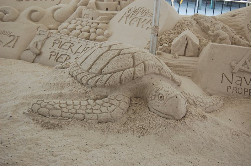 Sand carving competition right on the beach