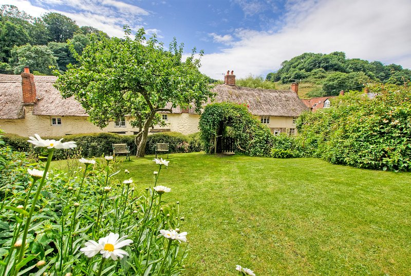 Garden view from Yew Tree Cottage