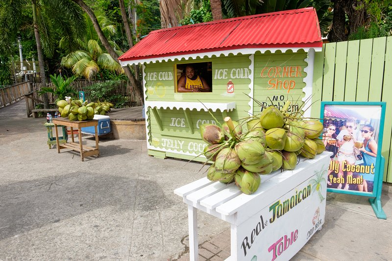 Cocco nut man right on your door step.