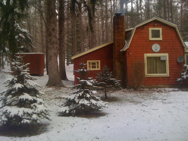 Hunting Cabin, holiday rental in Frewsburg