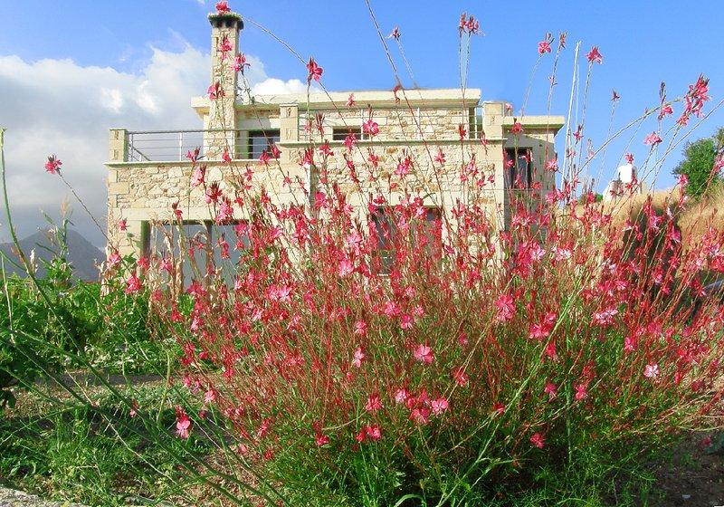 Villa Christina, casa vacanza a Kissamos