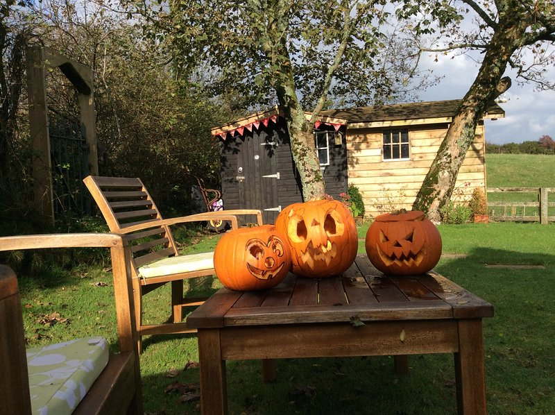 celebrating halloween in the back garden