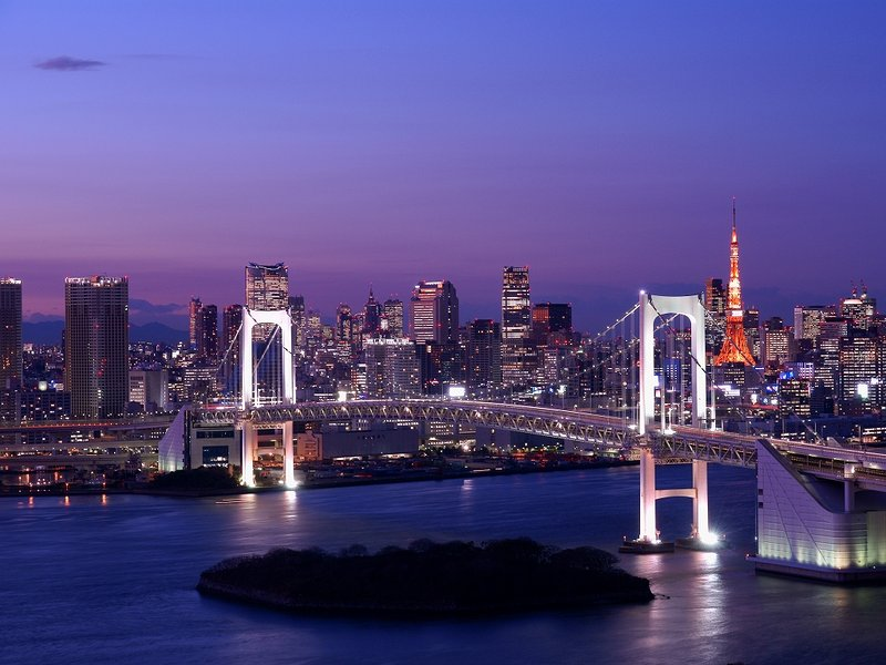 tokyo  metropolitan expressway night view tour 60 minutes by car