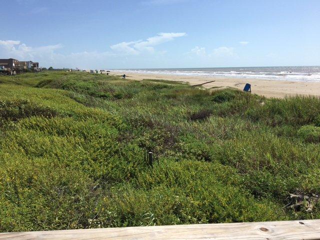 Des plages tranquilles avec entraînement sur l'accès à proximité