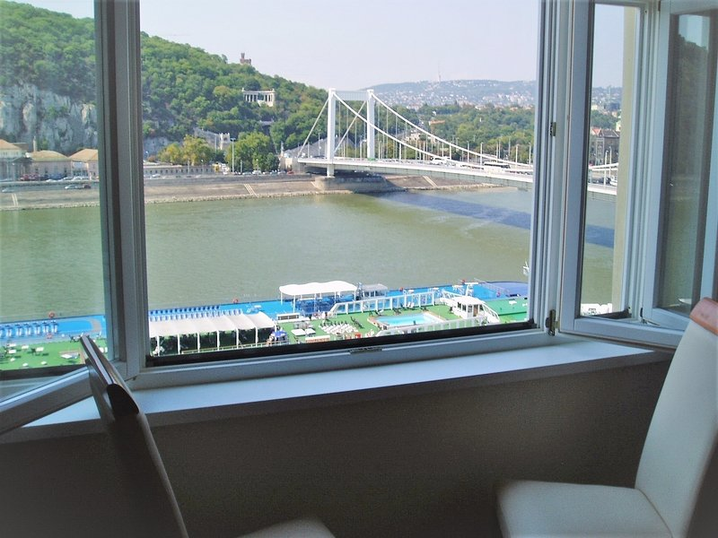 View of Danube from living room window