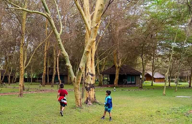 Les terrains de camping sont adaptés aux enfants et les animaux de compagnie
