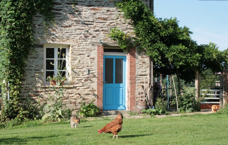 Teasel Cottage - Green, Organic Country Hideaway, vacation rental in Jarnages