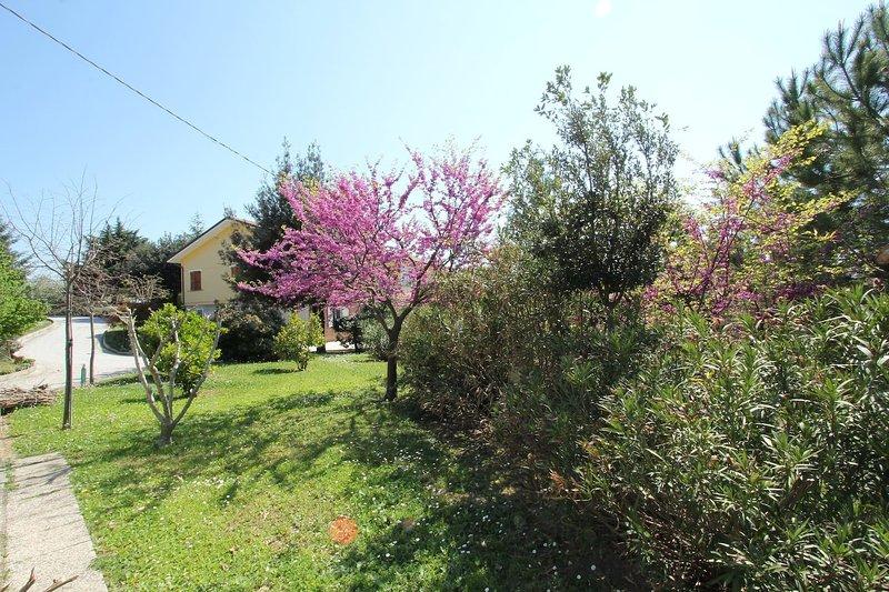 Casa Pinella, vacation rental in Monte Giberto