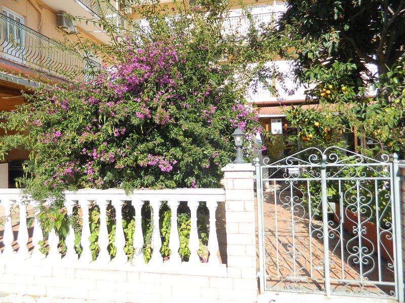Logaras Apartments, vacation rental in Agia Efimia