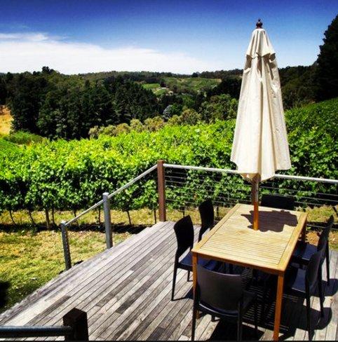 En 20 minutes en voiture, vous pouvez être échantillonnez de renommée mondiale des vins Adelaide Hills!