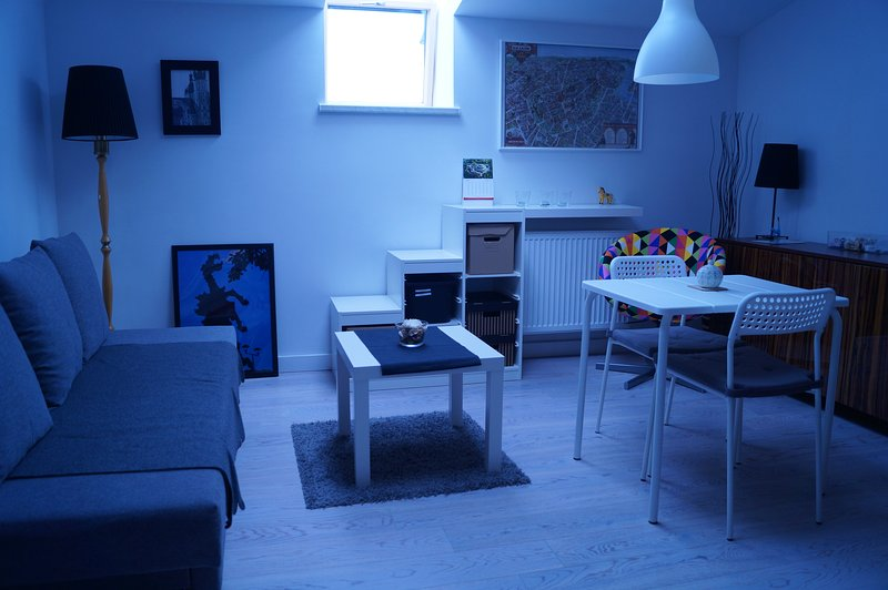 Small studio apartment, city center, vacation rental in Wegrzce
