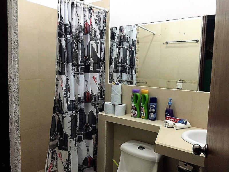 Les grandes salles de bains spacieuses avec douches