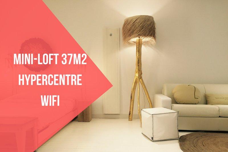 MINI-LOFT 37m2 + HYPERCENTRE + WIFI, location de vacances à Quint-Fonsegrives