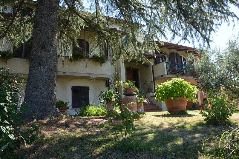 Facade, garden and entrance